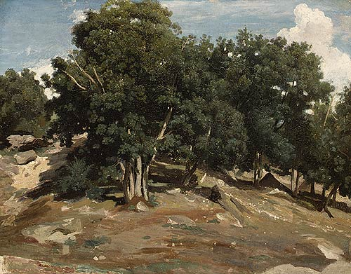 An example from the Barbizon School:  Fontainebleau : Oak Trees at Bas–Bréau, 1832/1833, Camille Corot.