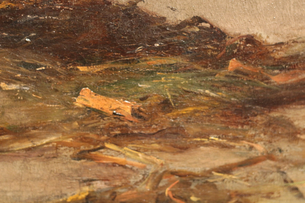 Detail of seaweed strewn on shore from Carl Marr's 'Mystery of Life,' 1879.