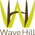 WaveHill.png