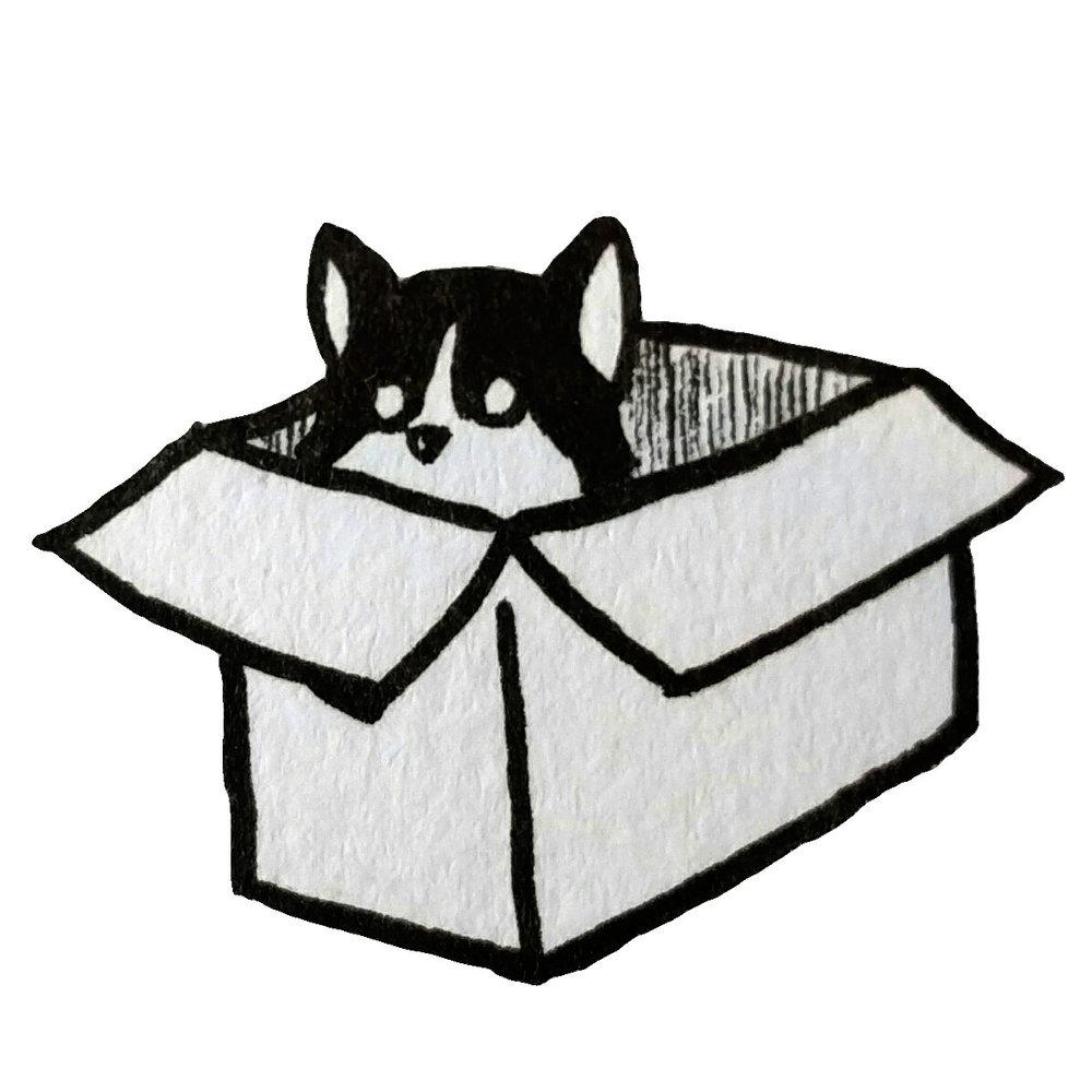 phoebox.jpg
