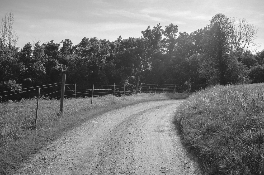 Brae Ridge.  King George County, Virginia.  2014.
