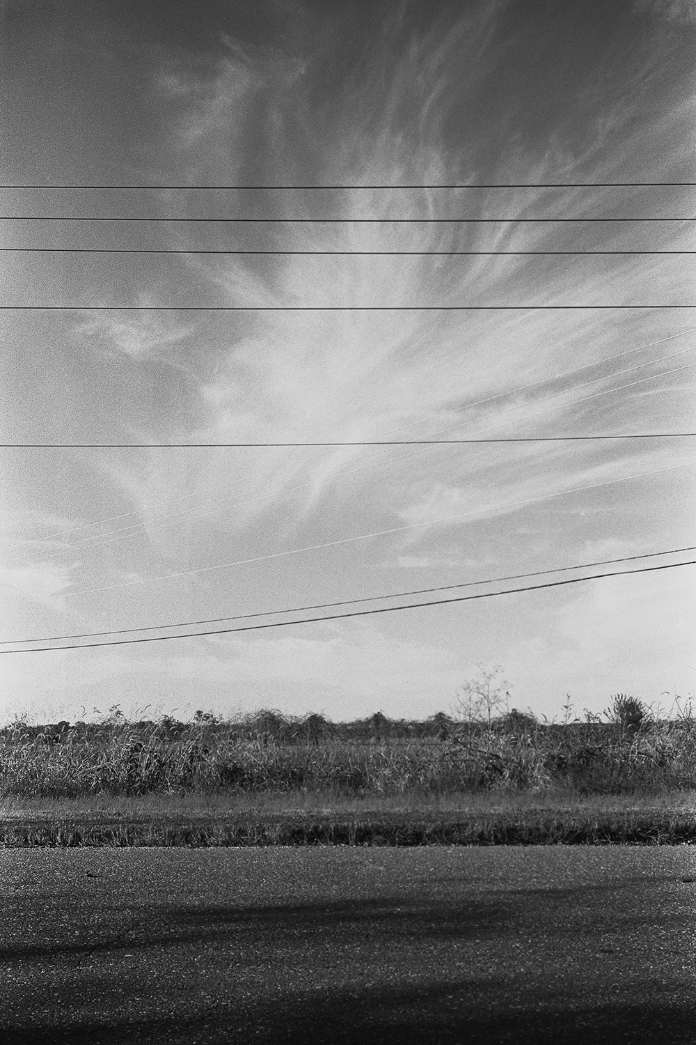 Power and telephone lines at Little Falls Landing.  Stafford County, Virginia.  2014.