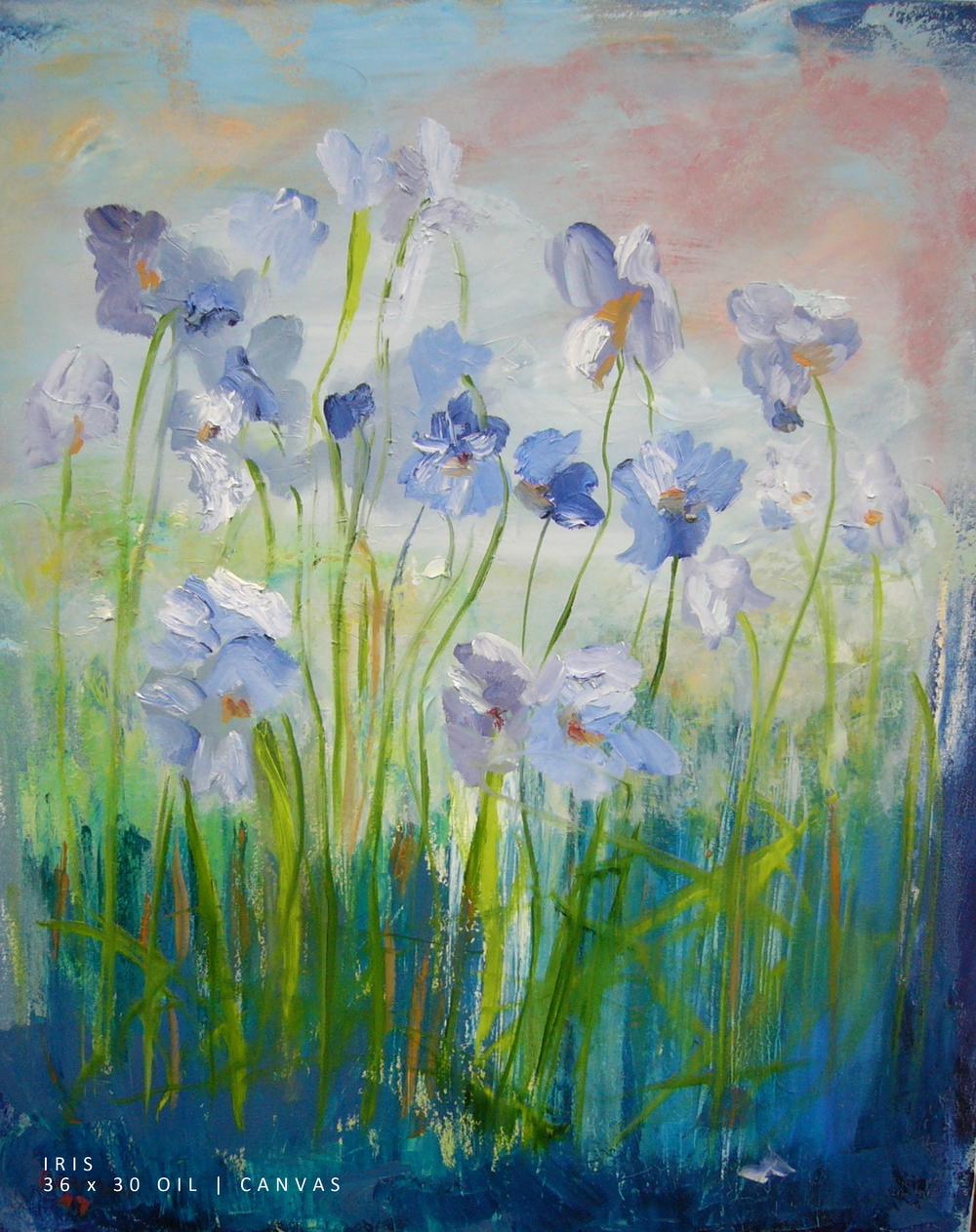 Iris 36x30 Oil-Canvas NEW.jpg