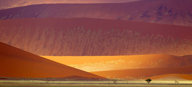 GO NOW: 5 Unforgettable Namibia Adventures