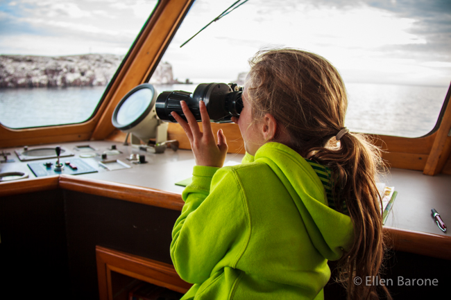 Watching for wildlife from the wheelhouse, Safari Endeavour, Sea of Cortés.