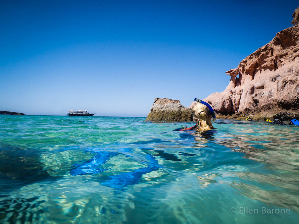 Snorkeling, Ensenada Grande, Isla Partida, Sea of Cortés, Baja California, Mexico.