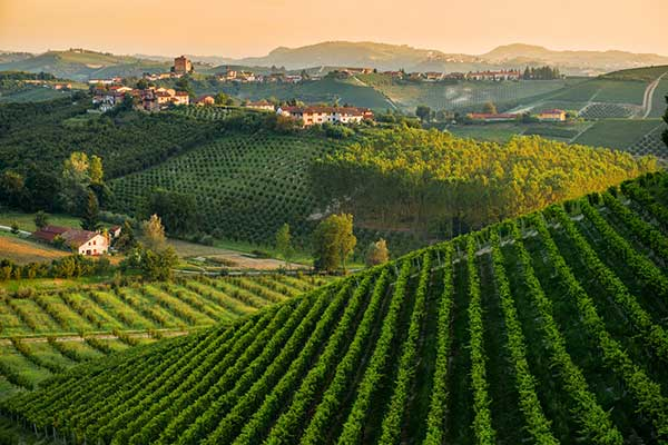 tuscan-panorama-web-c.jpg