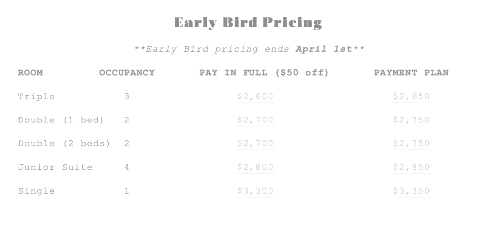 Early Bird Pricing Grey.png