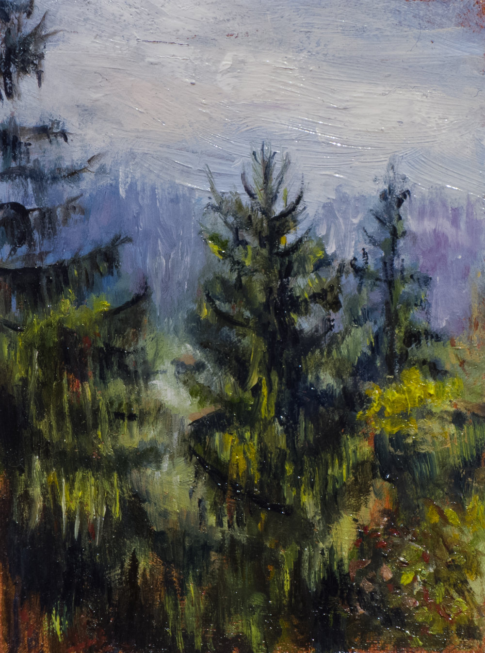 BAUMWIPFEL (sold) oil on card, 2015