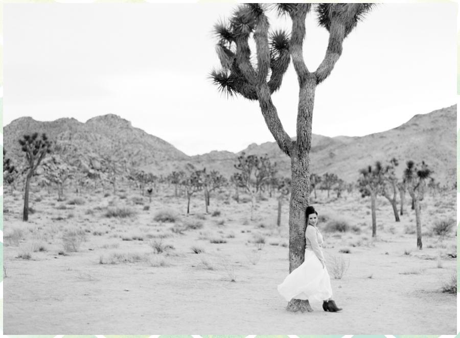 Ariane Moshayedi Photography_0237.jpg