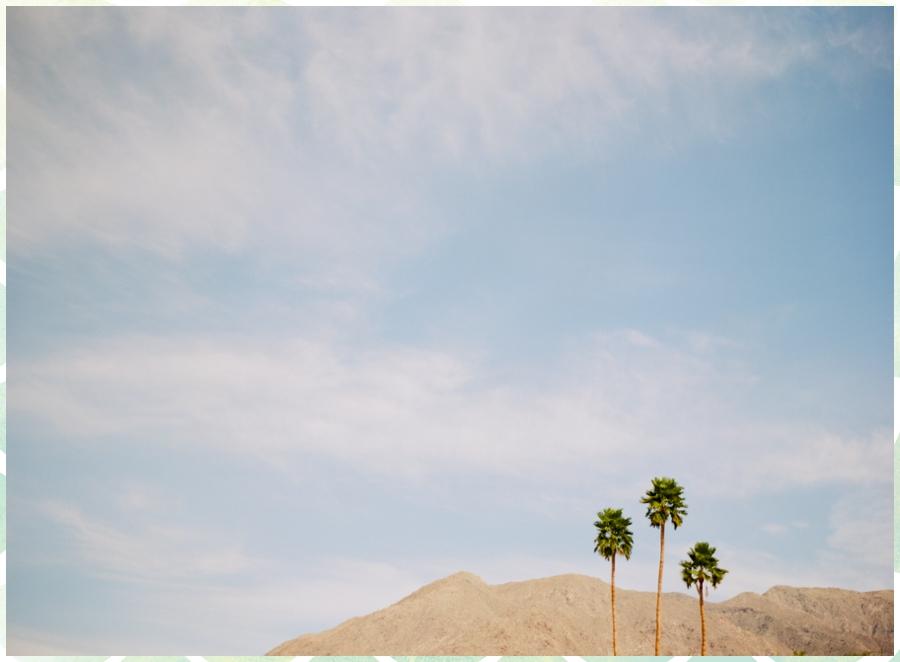 Ariane Moshayedi Photography_0246.jpg