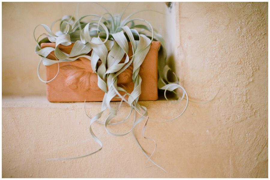 Ariane Moshayedi Photography_0118