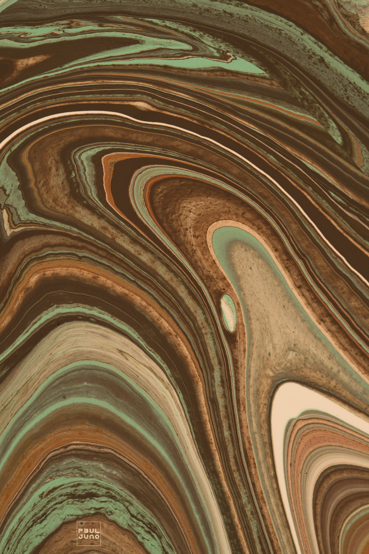 Paul_Juno_foliage1396a.jpg