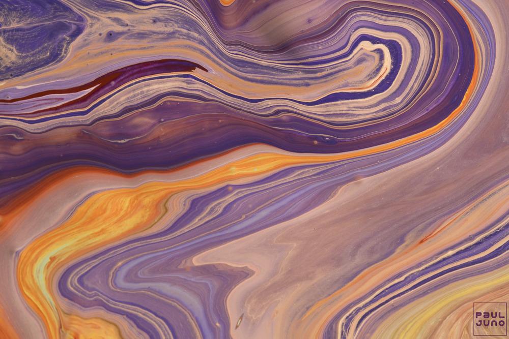 Paul_Juno_foliage1779.jpg