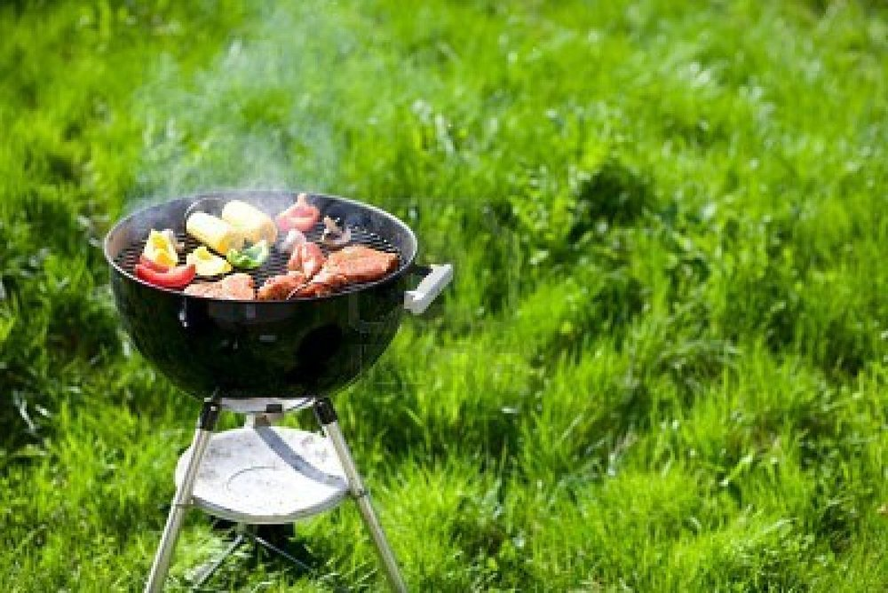 3055270-grilling-at-summer-weekend-fresh-meat-and-vegetables-preparing-on-grill-1
