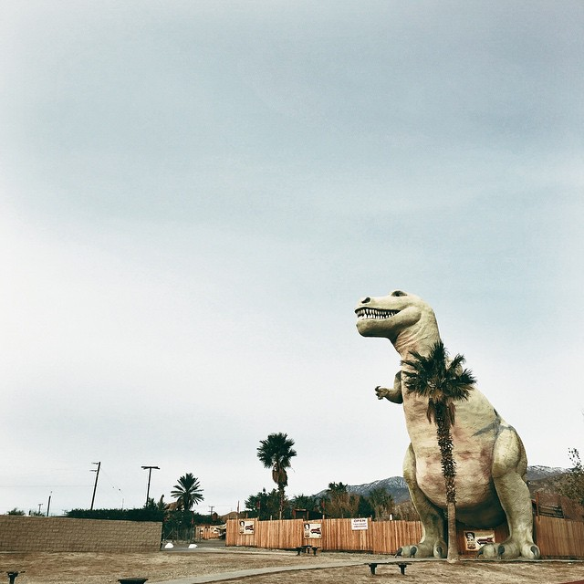 We stopped on the way to Palm Springs to snap this shot of a T. Rex. This shot is from Jennier Teo, our Senior Graphic Designer.