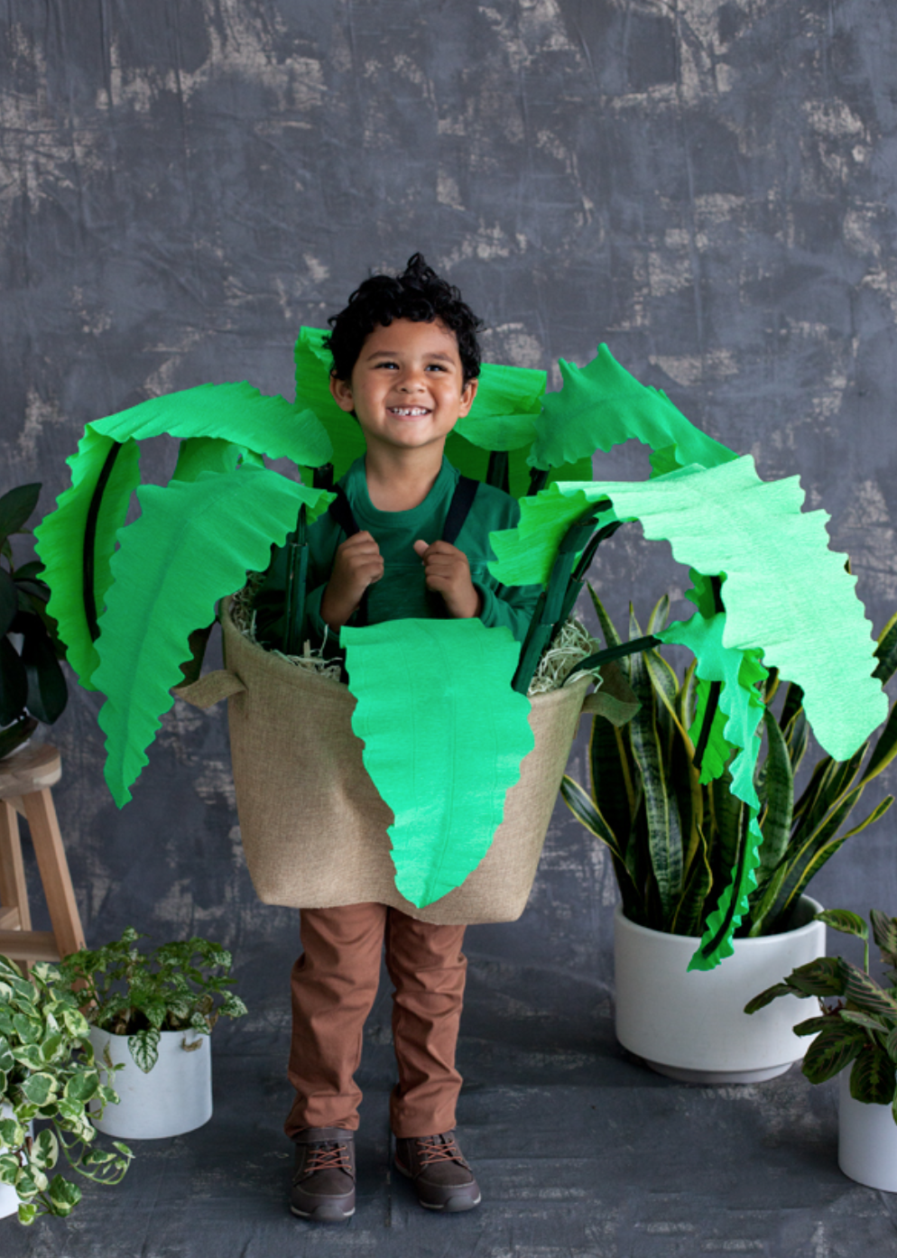 House Plant - What you'll need: Crepe paper, corrugated paper, paint brush, green acrylic paint, brown felt, canvas straps, scissors, basket, hot glue gun and excelsior.
