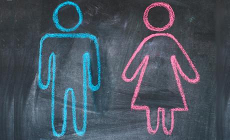 genderbalance