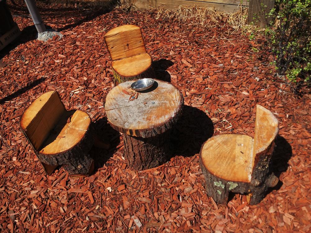 SSELC-Log-Chairs-Mar14.png