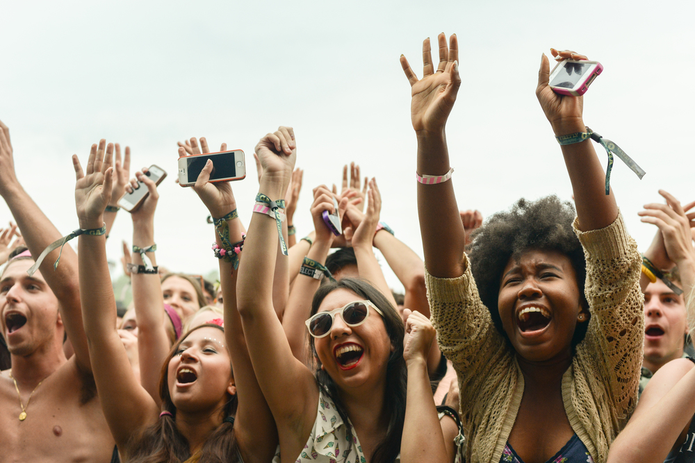 Fans at Firefly Music Festival