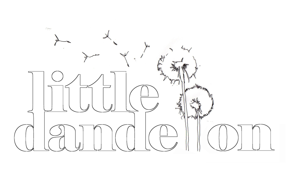 Little dandelion sketch -  Photo by Zac Mead