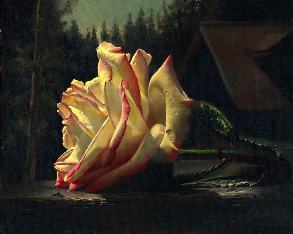 video-rose.jpg