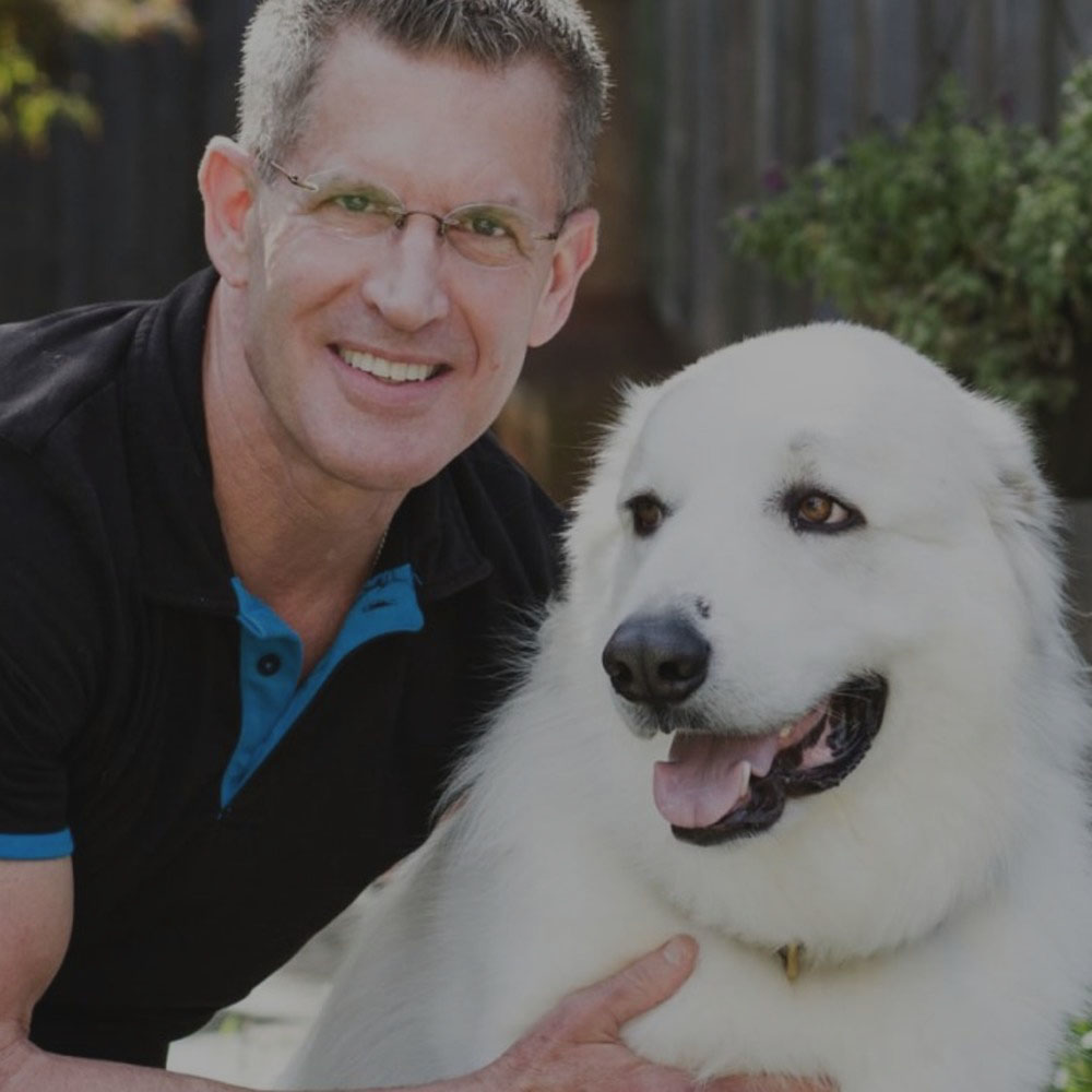 Watch Scott's  FREE dog body language video and learn about his other dog training videos -