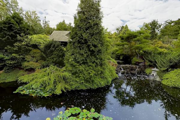 Japanese Pool - Hobart Botanic Gardens