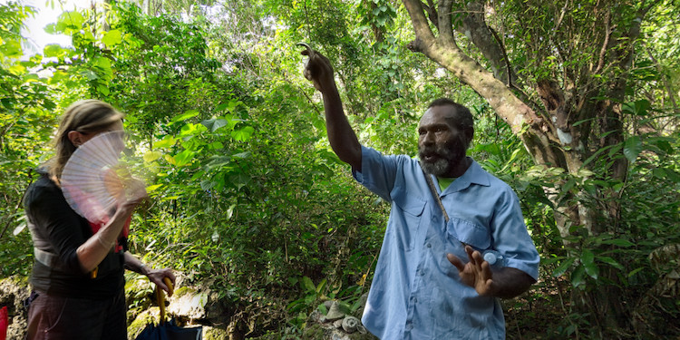New: Walk in the jungle with Lawa Chief