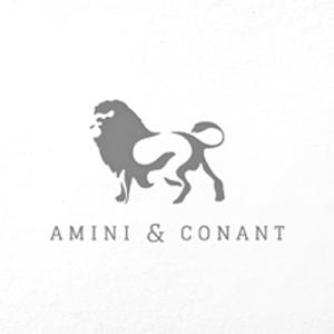clientlogosforweb_amini+conant.png