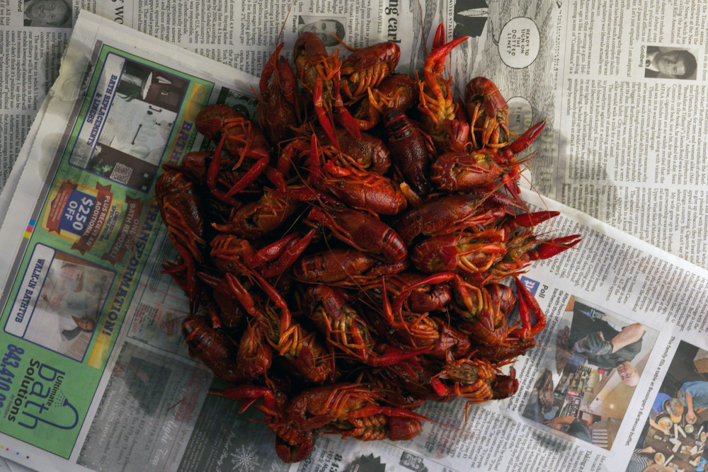 crawfish... not sure how I feel about these little guys, but apparently they have yummy head juice... :/
