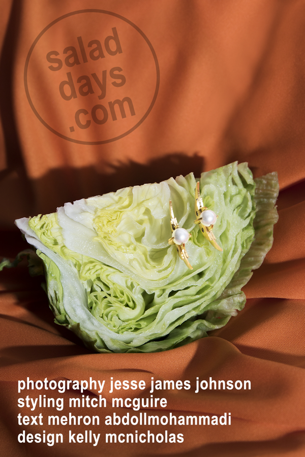 salad days web jpeg01.jpg