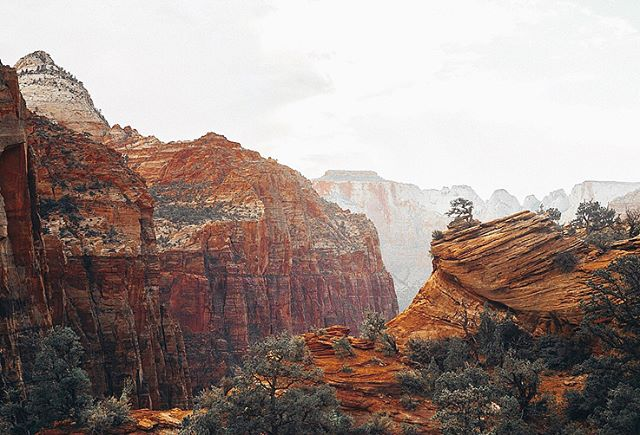 Zion and it's magic are now up on ze blog go check it out for more of this incredibly beautiful place😍✨ #findyourpark