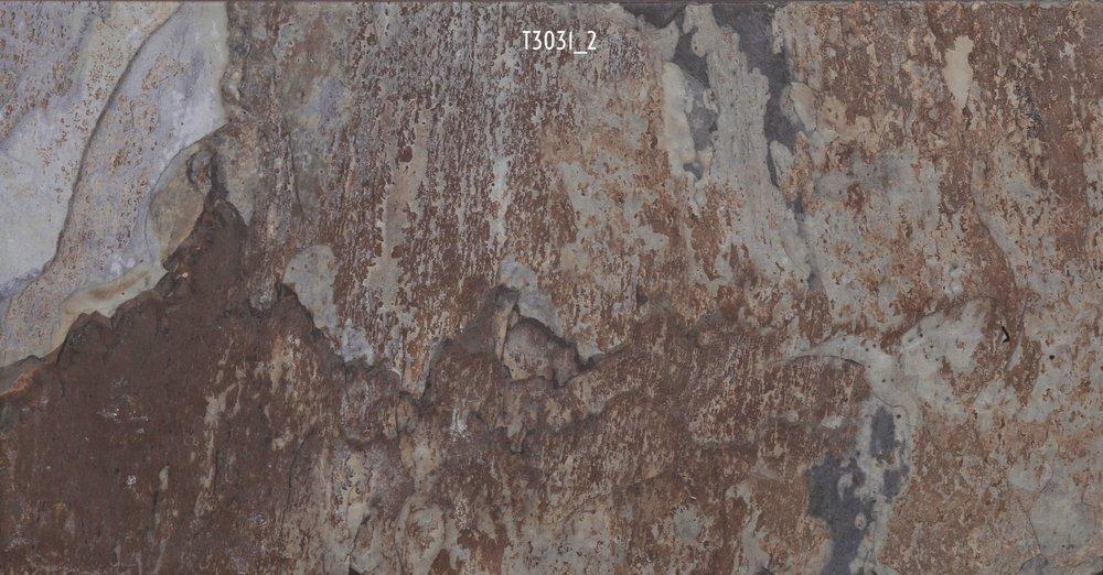 T3031_2
