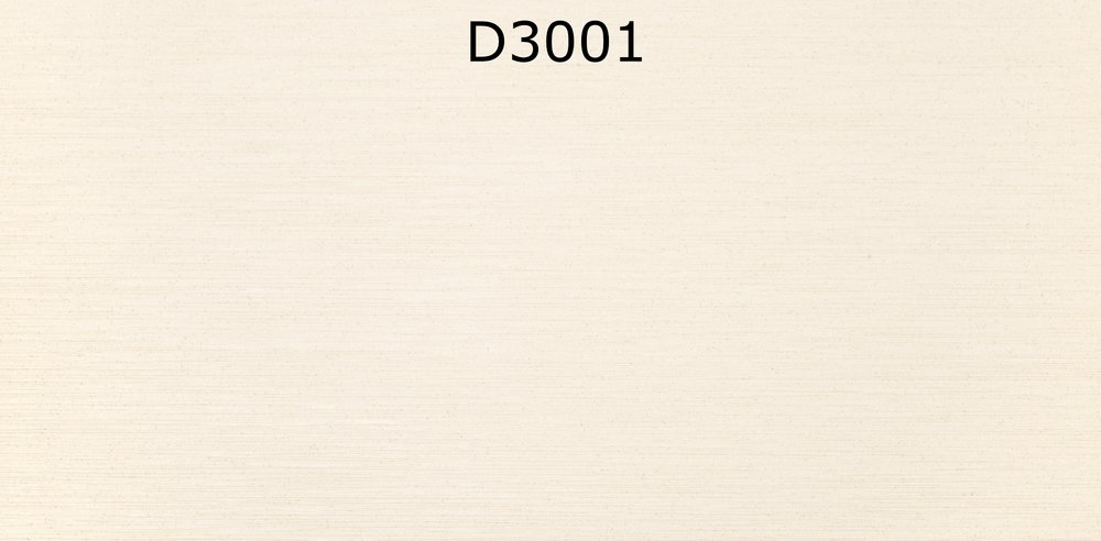 D3001