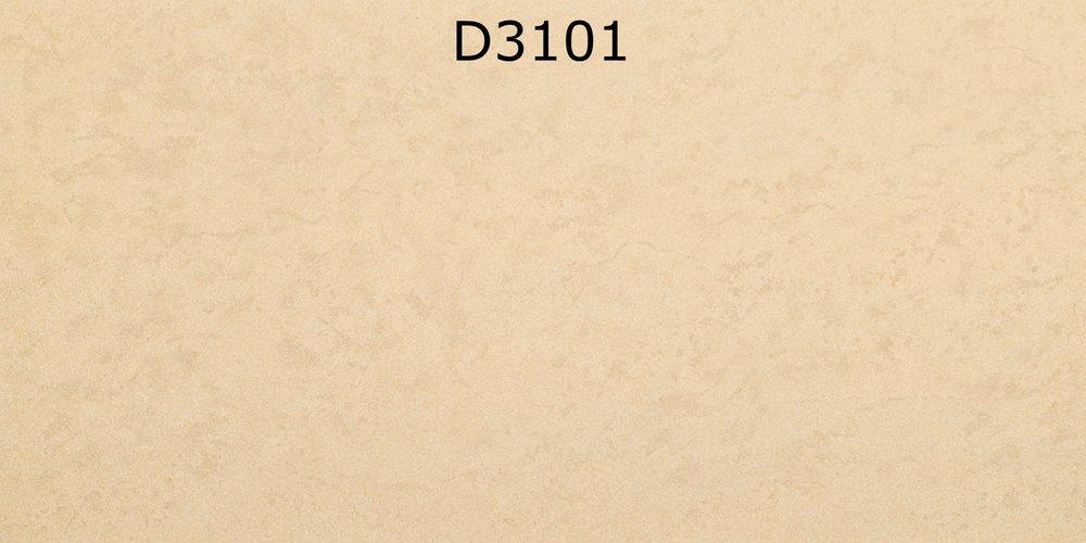 D3101