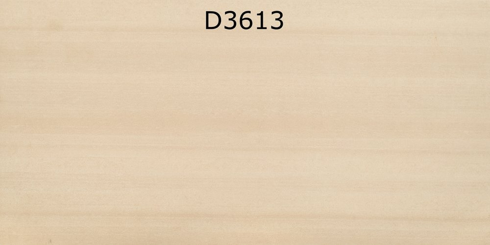 D3613