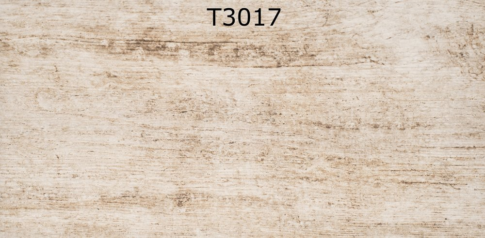 T3017