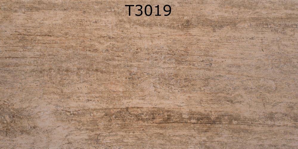 T3019