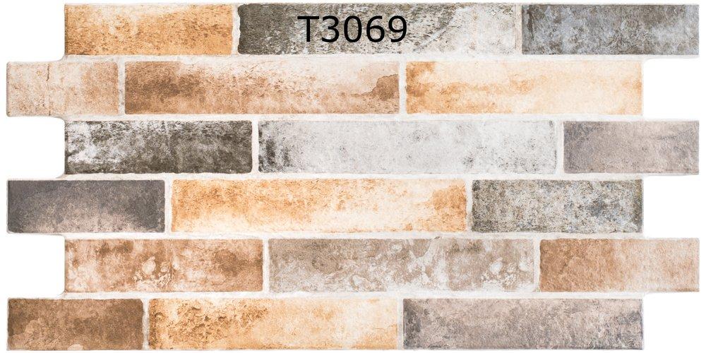 T3069