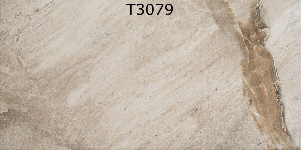 T3079