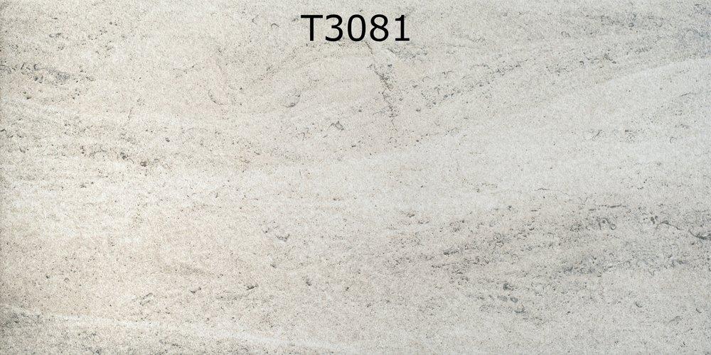 T3081