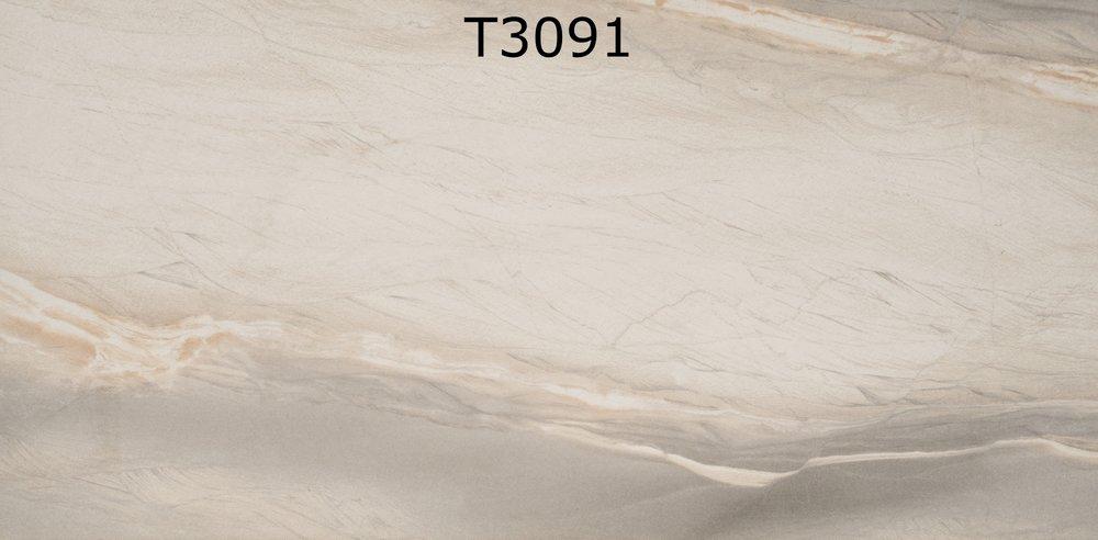 T3091