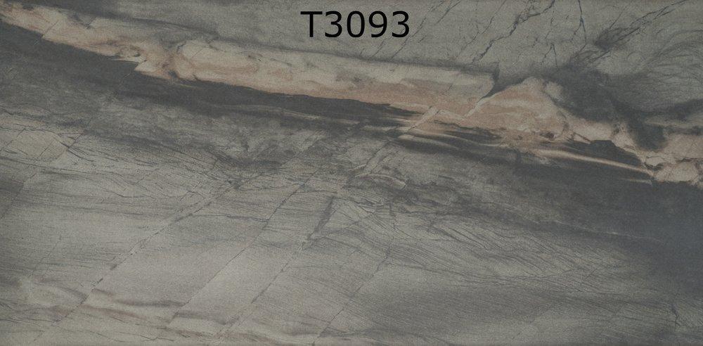T3093