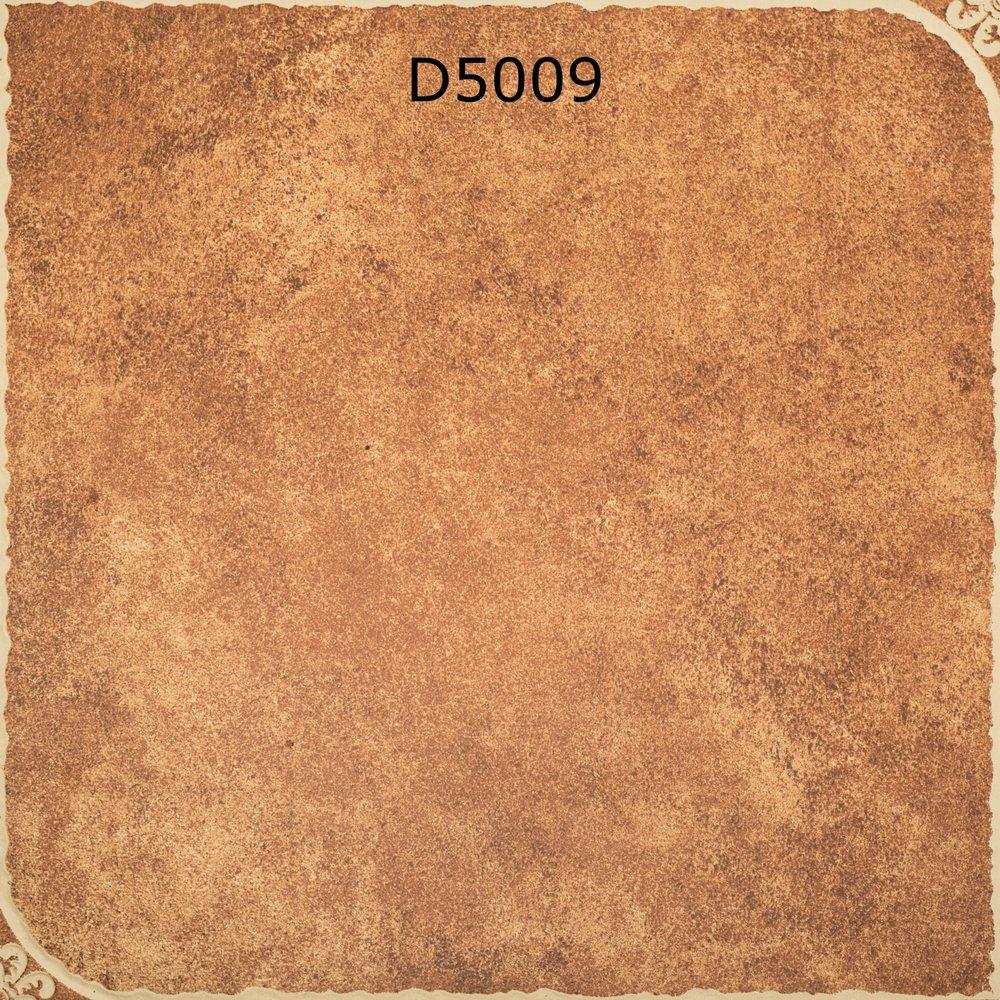 D5009