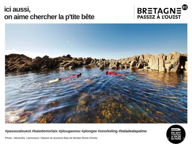 Bretagne4.jpg
