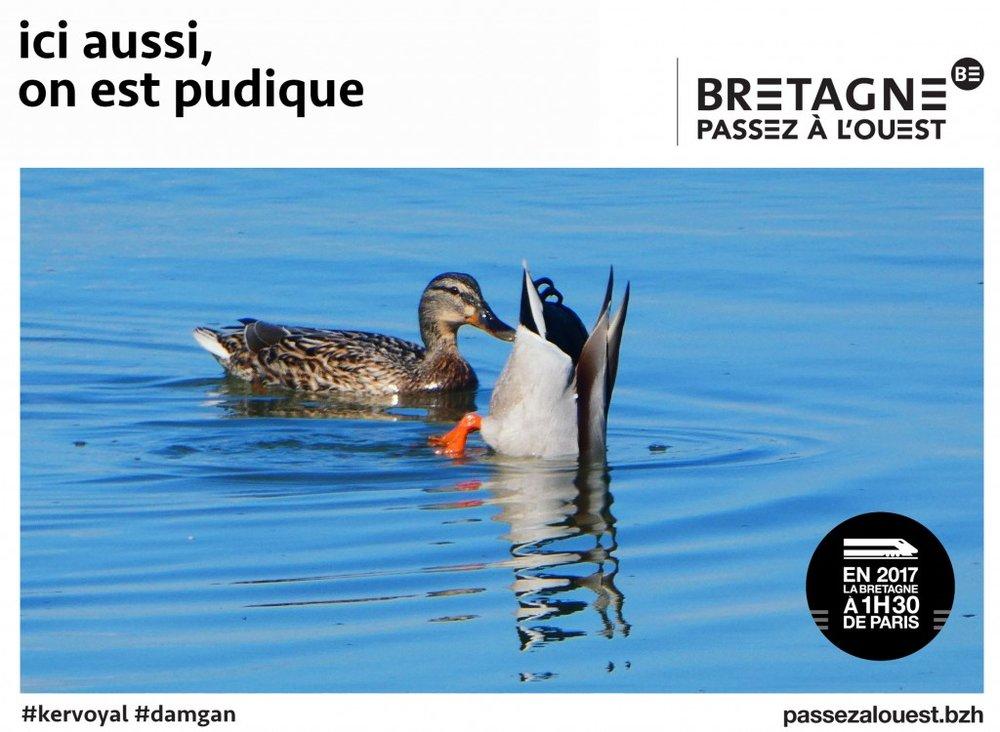 Bretagne6.jpg