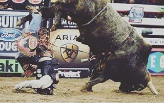 Have any good captions for this? Interested in winning some tickets to the PBR this weekend at the SaskTel Centre? Enter our Facebook contest at the U of S Rodeo Teams page! #pbr #saskatoon #rodeo #bullfighting #usask