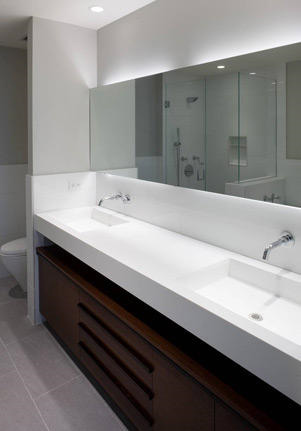 streeterville Contemporary Master Bathroom
