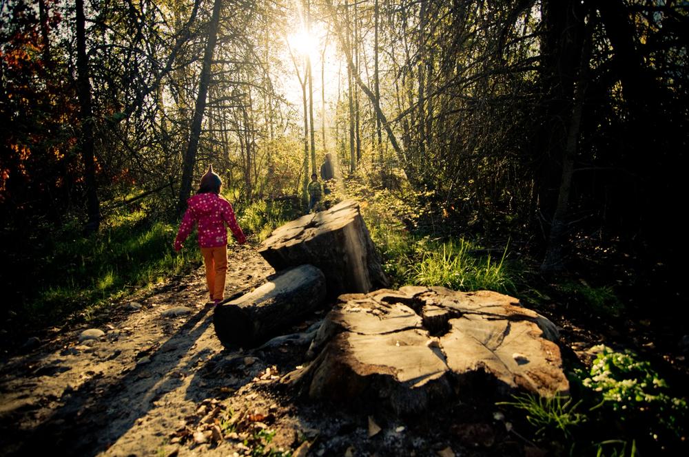 Gladstone Provincial Park, British Columbia